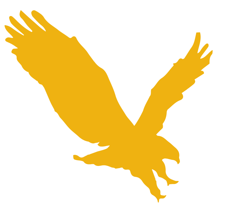 The Business Source logo - a flying eagle